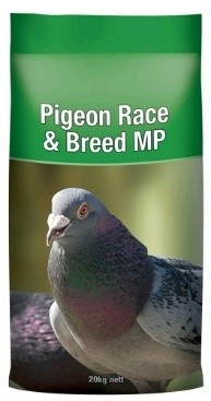 21 Pigeon Race & Breed MP.jpg