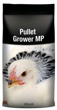 23 Pullet Grower MP.jpg