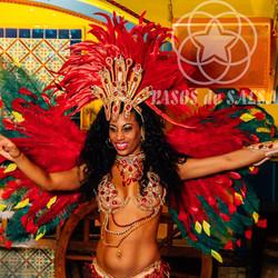 Яркое шоу-карнавал, бразильская самба