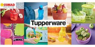 Tupperware_Conad.jpg