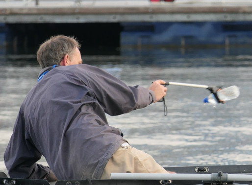 Saturday 9th June: Poole Harbour Boat Show - Day Two