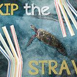 plastic-straw-ban-ftr.jpg