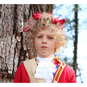 Cardinal Prince