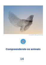 opusculo14_A14.jpg