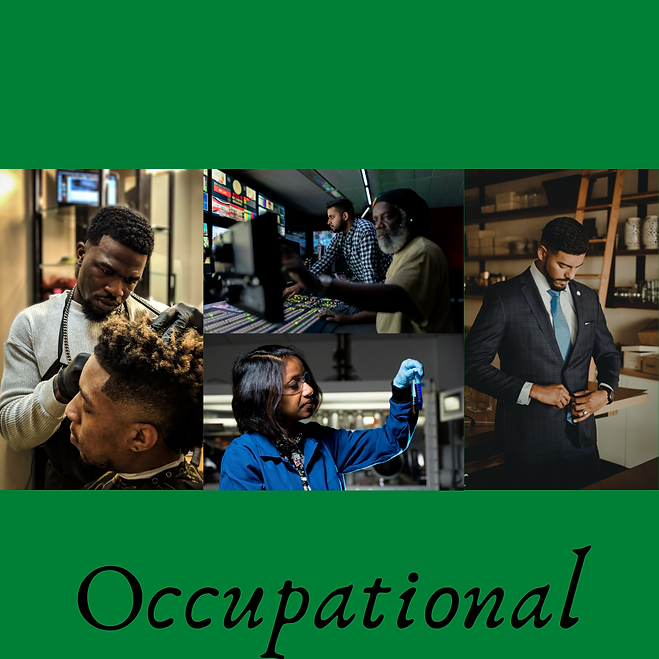 5. Occupational.png