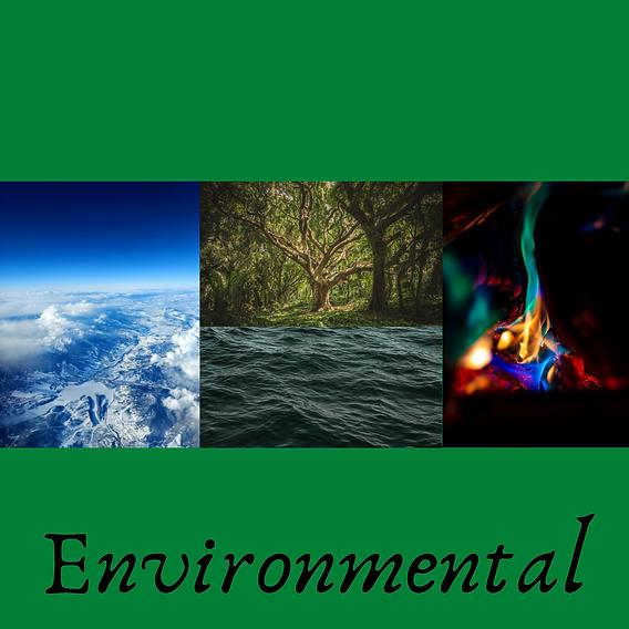 7. Environmental.png