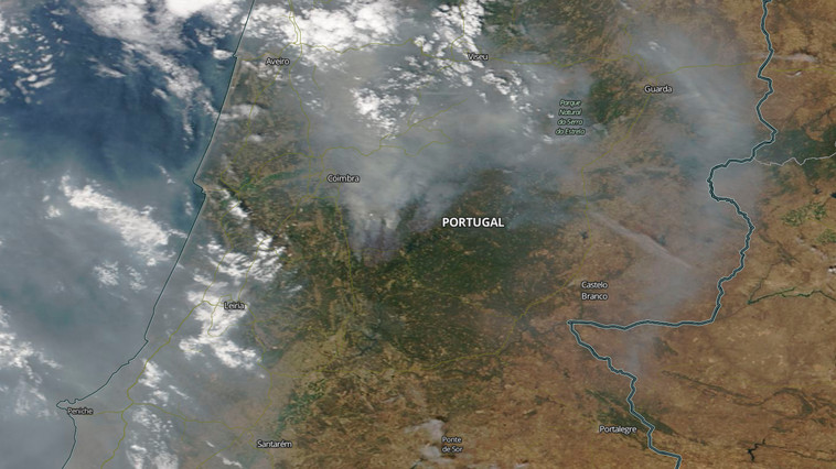 The forest is burning: what the fires in Portugal teach us about today's climate change and the