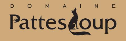 Logo Pattes Loup.png