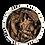 Thumbnail: Basilic du Kenya