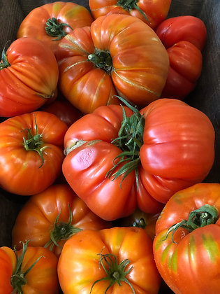 Tomate ancienne /300g