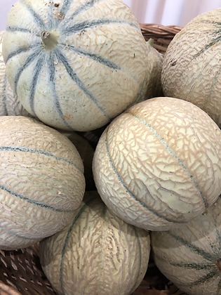 Melon /1,3 Kg
