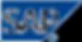sap-ag-co-kg-vector-logo-free-download-1