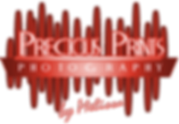 ppp logo-red.png