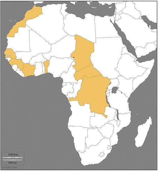 Afrique + couleurs.jpg