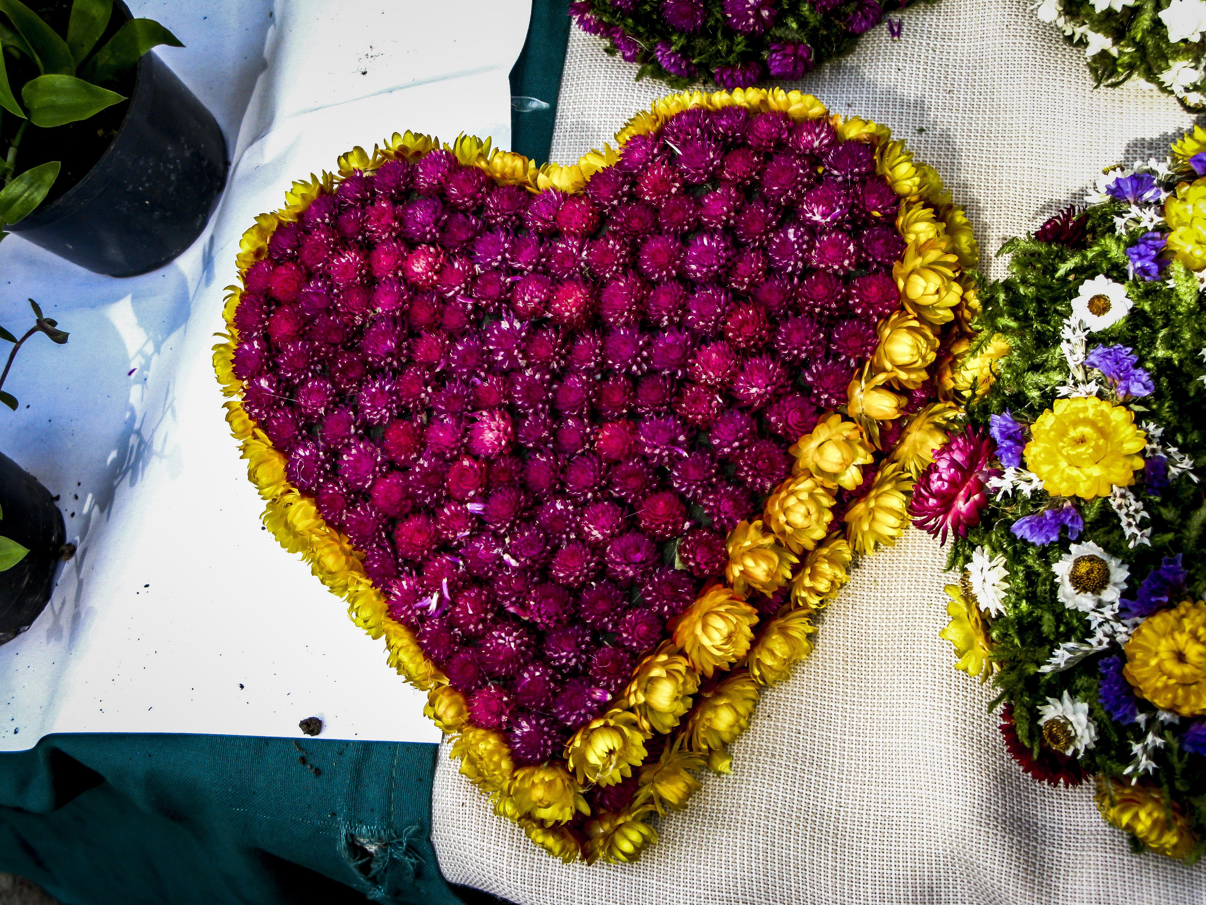 Composizioni floreali a Lubiana