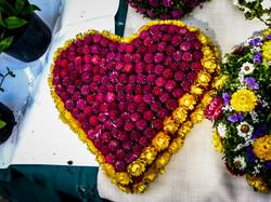 Heart shaped flowers in Ljubljana