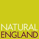 NatEng_logo.jpg