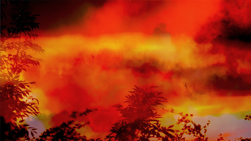 """Unreal Fire"""