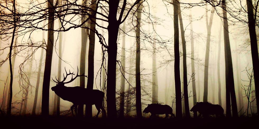 AFHAALMENU - Wildfestijn  (1)