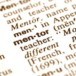 mentor woordenboek .jpg
