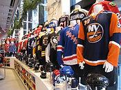 Hokejové zájazdy na NHL