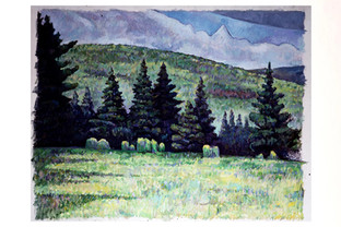 Field with Spruce Trees (Underpainting)