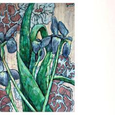Iris with Carpet