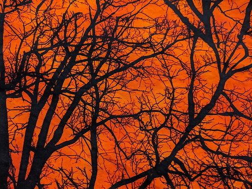 Shaped Orange Winter Trees