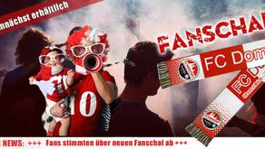 Fans haben sich für Fanschal entschieden