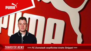 Andre Strippel wechselt zum FC Domstadt