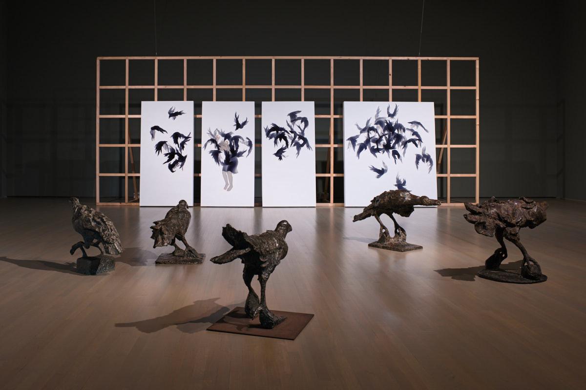 Room of Crows / カラスの部屋