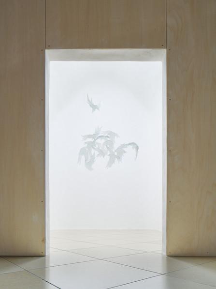 Birds Haus
