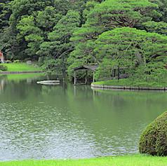 Conservation Management Plan, Tokyo