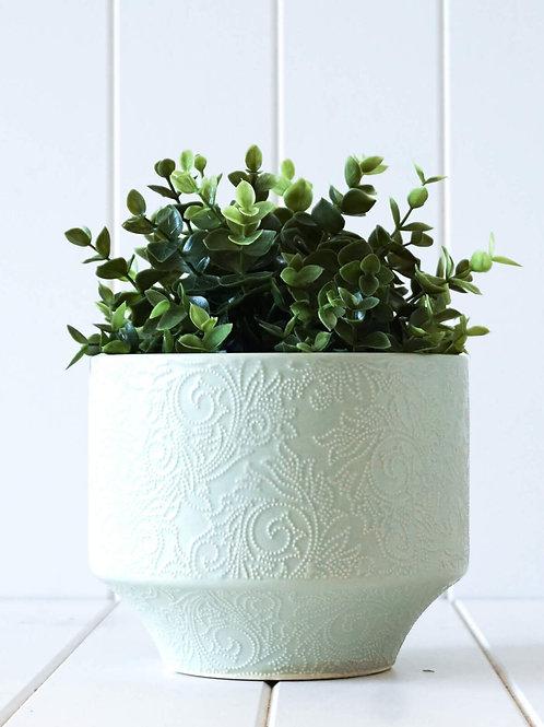 Pot/Planter Dijon Mint