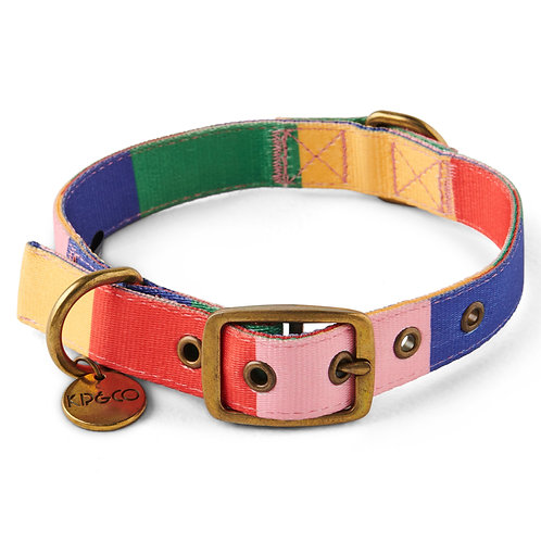 Rainbows End Dog Collar - Large