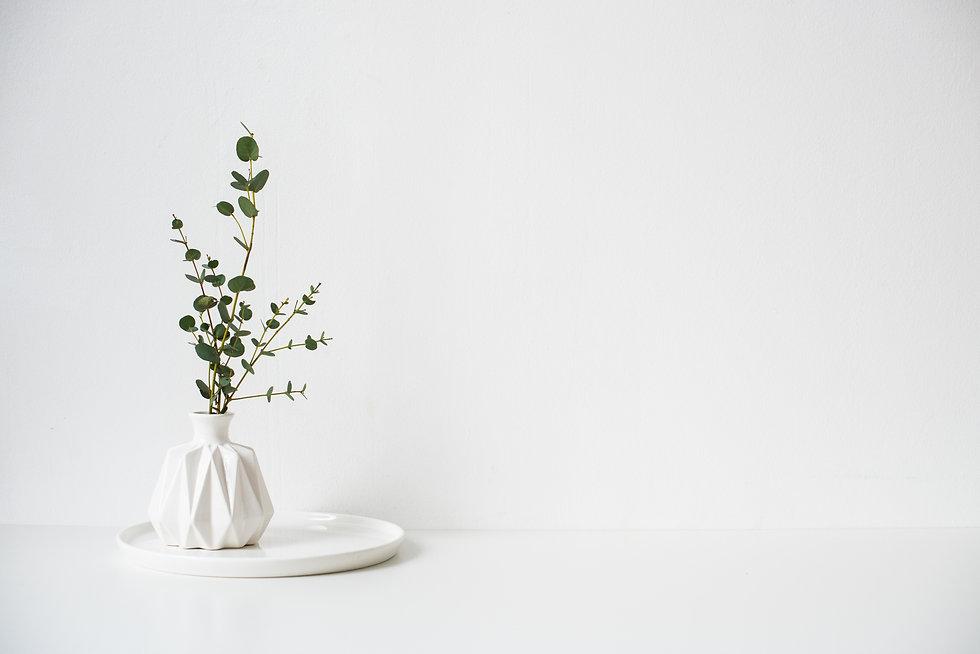 Eucalyptus branches in white ceramic vas