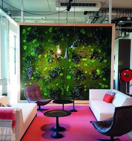 VIBE Architectural Systems partners with owners and designers to deliver beautiful, authentic, and unique materials that drive your customers' experience through biophilic design.