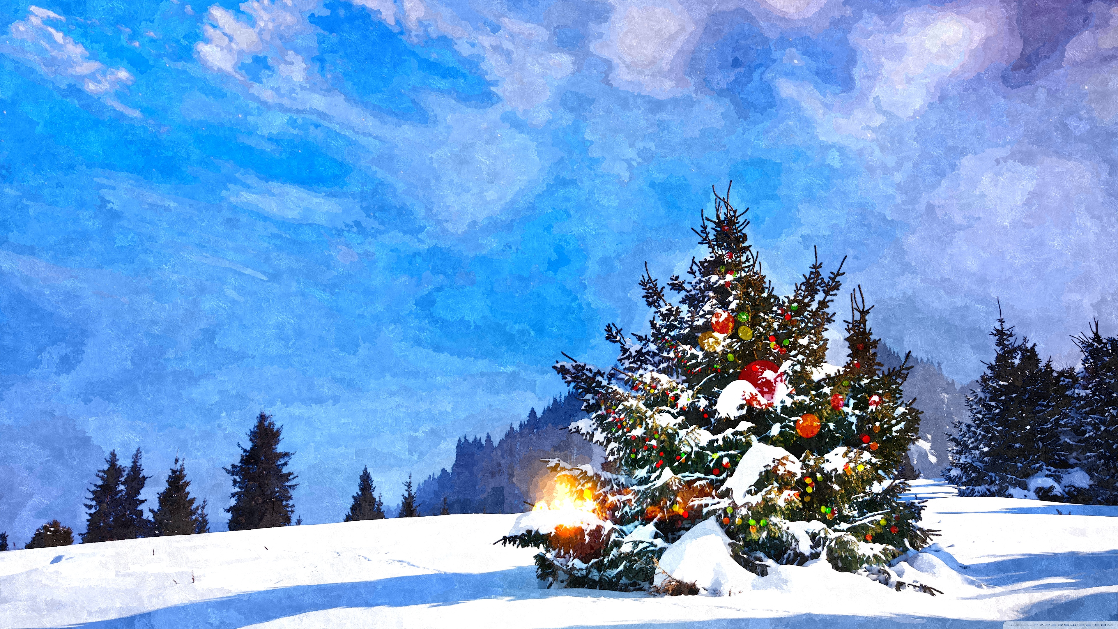 christmas_trees_decorated_outside-wallpa