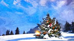 christmas_trees_decorated_outside-wallpa