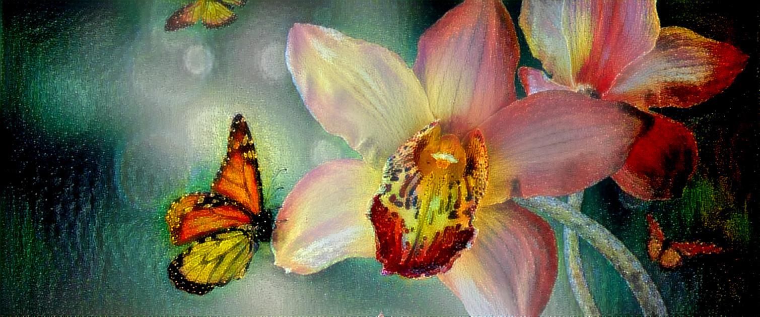 2011.05.나비와 꽃 #624.jpg