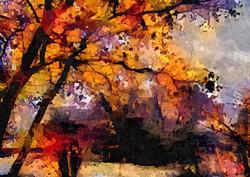 나무 (6)