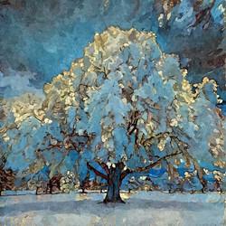 나무 (17)