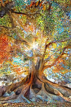 1999 나무