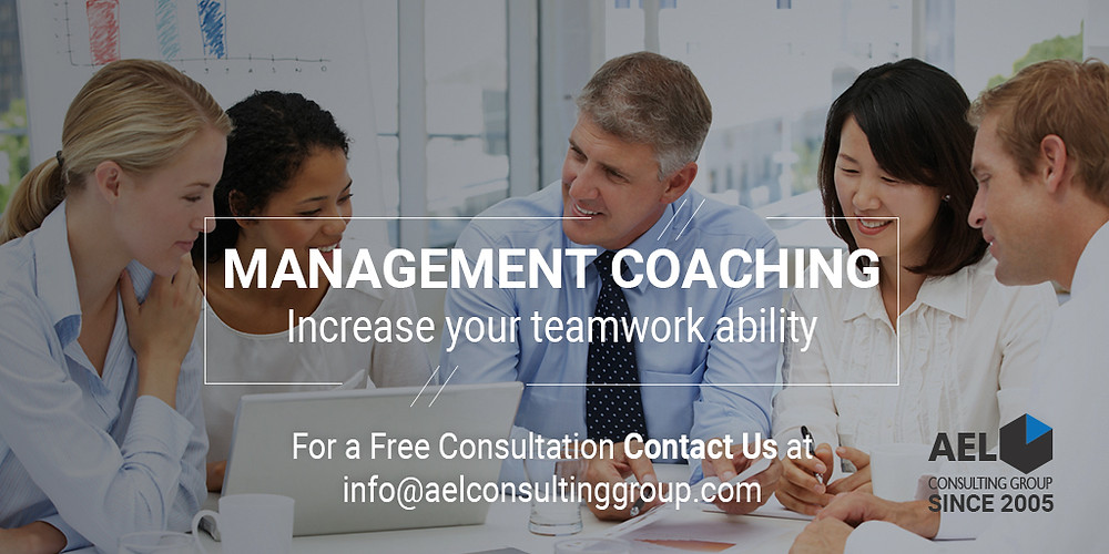 AEL Consulting Group Management Coaching