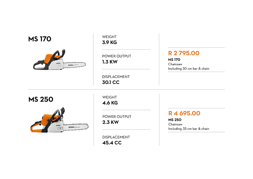 June - Products on Promo - Chainsaws2.pn