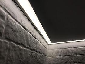 Контурные потолки в Рязани