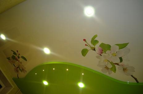 Двухуровневый натяжной потолок с фотопечатью и точечными светильниками