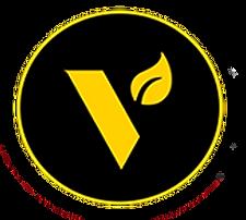 vgo logo.png