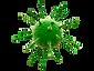 Virus-VERT-PSD.png