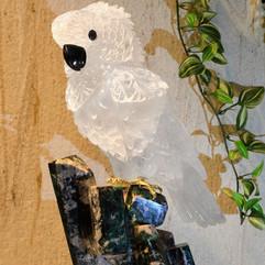白水晶鳳頭鸚鵡雕件